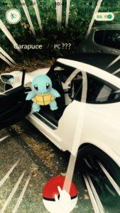 Pokemon-go-PGO-2